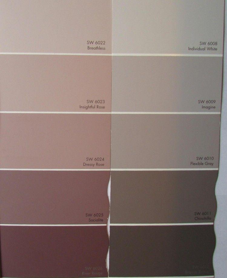 Peinture rose nuancé pour les murs dans l'intérieur