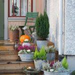 Plantations d'hiver sur la terrasse / terrasse décorations dans le style d'hiver