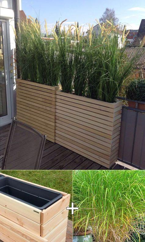 Plantez de la citronnelle haute dans les grandes jardinières en bois pour le balcon du jardin