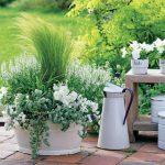 Plume d'herbe dans une baignoire en émail - #Baignoire Emaille # Herbe de printemps