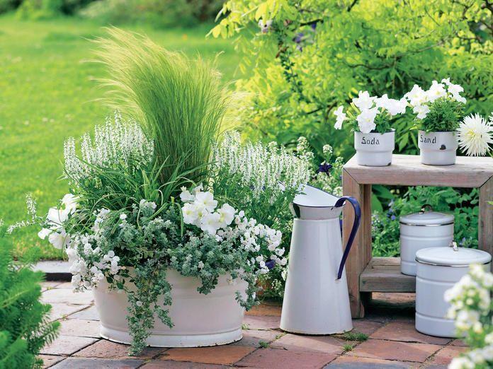Plume d'herbe dans une baignoire en émail – #Baignoire Emaille # Herbe de printemps