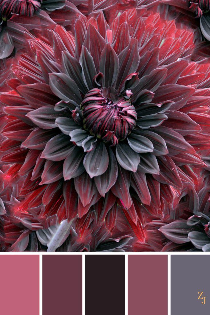 ZJ palette de couleurs 276 # palette de couleurs # inspiration de couleurs #colorinspiration # palette de couleurs