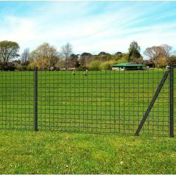 clôtures de maillon de chaîne