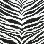 Black White Zebra Print Broadcloth Fabric
