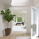 Bright white walls in the entryway + light wood floors + fig leaf tree in the en...