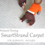 Carpet For Elephants (and For My Kids