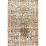 """Traditional 2982 area rug - 5'0"""" by 7'0"""" - 5' x 8'/Surplus, Multicolor"""