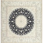 """Traditional 3463 area rug - 5'0"""" by 7'0"""" - 5' x 8'/Surplus, Multicolor"""