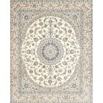 """Traditional 4588 area rug - 5'0"""" by 7'0"""" - 5' x 8'/Surplus, Multicolor"""